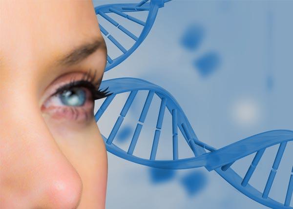 unidad de perfil genético